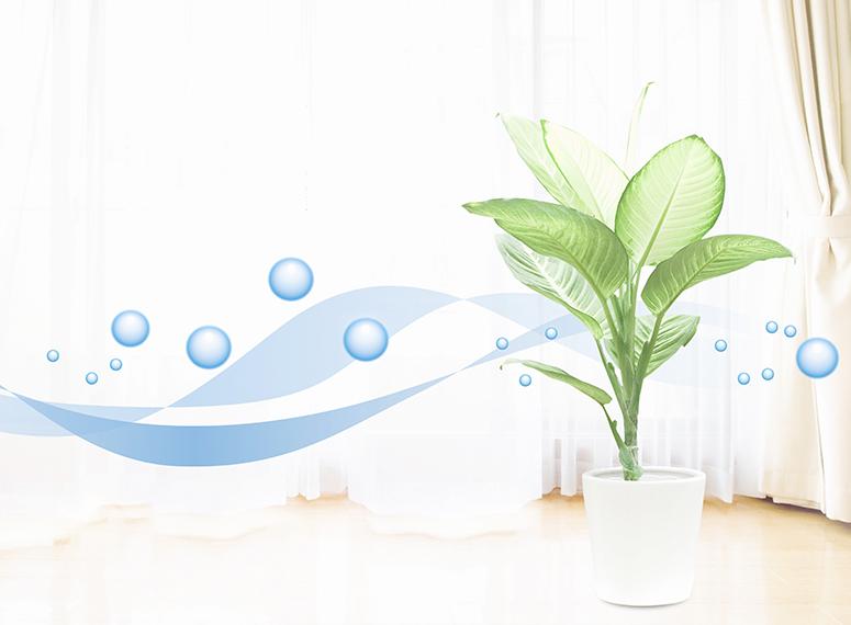 Με τη λειτουργία ECO επιτυγχάνεται ακόμα μεγαλύτερη εξοικονόμηση ενέργειας, από 25% έως και 50%, καθώς η μονάδα προσαρμόζει τη λειτουργία της στις ανάγκες του χώρου σου. Έτσι, καταναλώνετε μόνο την ενέργεια που πραγματικά απαιτείται.